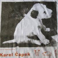 90's 日本製 カレル チャペック ダーシェンカ 子犬 フォト Tシャツ M ホワイト Karel Capek Dasenka フォックステリア 芸術 ART現代美術【deg】