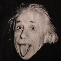 90's USA製 アルベルト アインシュタイン FOTOFOLIO 舌出し フォトTシャツ 1416 黒 Albert Einstein 写真 ベロArthur Sasse芸術【deg】