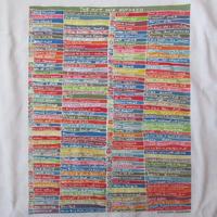90's ピーター デイヴィス FOTOFOLIO センセーション展 Tシャツ L 白 Peter Davies Sensation 美術館Damien Hirstダミアン ハースト【deg】