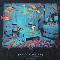 90's サンディ スコグランド Revenge of the Goldfish Tシャツ XL 黒 Sandy Skoglund 1981年 金魚の復讐 インスタレーション フォト【deg】