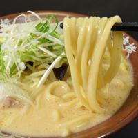 【本格生麺】白味噌ラーメン【2人前】