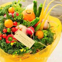 誕生日プレゼントやギフトにおすすめ野菜ブーケ(クール便送料無料)【※発送日は10月31日以降】