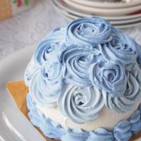4号【グルテンフリー】スマッシュケーキ【ブルー】