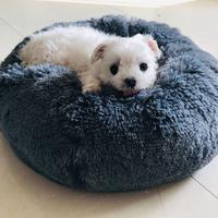 犬猫 ラウンド ベッド ハウス ソフト ロング  小型 巣 冬 暖かい睡眠 子犬 マット