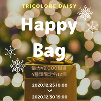 【Happy Bag】レディースイヤリング