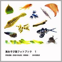 海あそび塾フォトブック1 季魚図鑑~漁港の珍幼魚・関東編~(鈴木香里武・著)