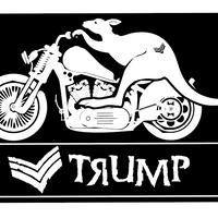 TRUMP バイクステッカー
