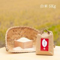 令和2年新米【美人米】白米5kg 千葉県神崎町産