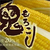 島田農園 鬼もろこし 5k(12本入)