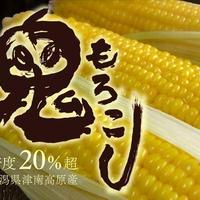 島田農園 鬼もろこし 10k(24本入)