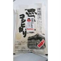 桑原健太郎さんのコシヒカリ(金賞受賞米)5kg