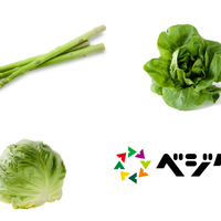 春野菜セット(アスパラガス、春キャベツ、サラダ菜)