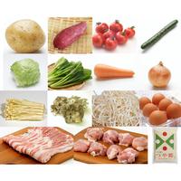 【お米入り基本セット定期便】定番&旬野菜・卵10品以上+国産銘柄豚肉・鶏肉200-300g+特別栽培米「つや姫」2kg