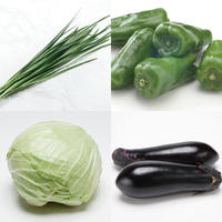 炒めもの野菜セット(キャベツ/ピーマン/なす/にら)