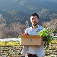 送料サイズUP(80→100サイズ)【野菜BOX+じゃがいもor玉ねぎを同時に購入の場合】