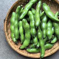 旨味と甘味にびっくり!旬の有機ソラ豆たっぷり1kg【箱なしエコ包装】