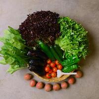 有機JAS野菜の直送ボックスお試しセット