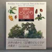 徳永桂子, 原正利「世界のどんぐり図鑑」