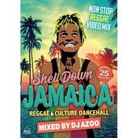 DJ AZOO 「 SHELL DOWN JAMAICA vol.6  -REGGAE & CULTURE DANCEHALL」(DVD)