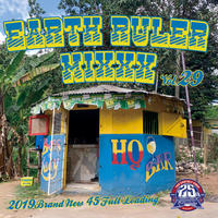FUJIYAMA 「EARTH RULER MIXXX vol.29」Mixed by ACURA