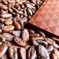 グアテマラ70% bean to bar choocolate 50g