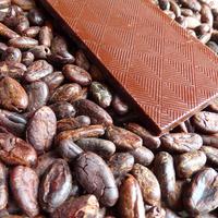 ブラジル70% bean to bar chocolate 50g