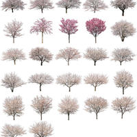 桜 27個セット  - Cherry Blossoms  sa_set01
