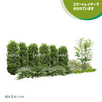 ガーデン植栽パースセット  GP003_09
