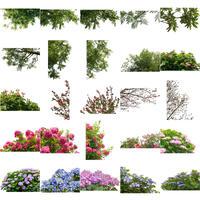 無料-前景樹木素材セット 80個 free_zenkei_set02