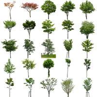 無料樹木素材セット 90個 free_trees_set02