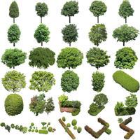 鳥瞰樹木30個セット Bird-eye-set02