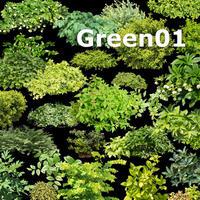 ガーデン庭木素材 グリーン系  31個セット  G30_03