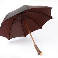 MARIO TALARICO 傘⑲ キウイの木の根