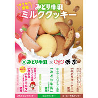 菊家の「懐かしいみどり牛乳クッキー」20枚入り
