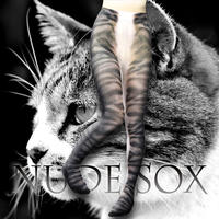 Nude  SOX MDT-010  Mad Science tights<キジトラ/Tabby cat>
