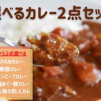 【送料無料】選べる沖縄ご当地カレー選べるセット 2点目以降は200円OFF
