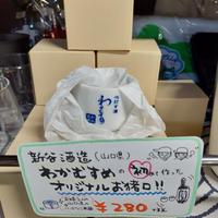 わかむすめ お猪口(50ml)×1ヶ