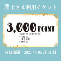 上さま利用チケット(3,000POINT)