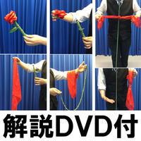 ローズファンタジー(解説DVD付)