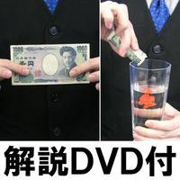 金魚ギミック(解説DVD付)