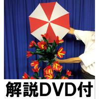 分裂ブーケ(解説DVD付)