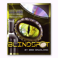 Blindspot(ブラインドスポット)