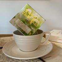 🌱【さわやかなミント】宇治紅茶館がセレクトした David tea collection