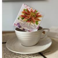 🌱【いちじくアールグレイ】宇治紅茶館がセレクトした David tea collection