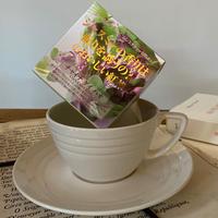 🌱【チャイナグイハオ】ニューパッケージ★宇治紅茶館がセレクトした David tea collection