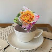 【ラム&スコッチ ティー】宇治紅茶館がセレクトした David tea collection