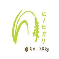 自然栽培米 ヒノヒカリ 玄米20kg 2019年度産