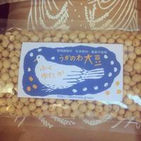 無農薬大豆ふくゆたか1kg