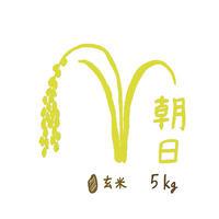 自然栽培米 朝日 玄米5kg 2019年度産