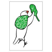 ポストカード(ふろしき文鳥A)